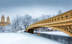 Wallpaper USA, New York, winter, snow, bridge bow, Central Park