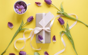 Picture flowers, gift, tulips, love, flowers, romantic, tulips, gift, spring, purple, with love