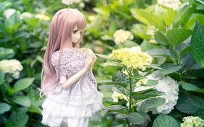 Picture hair, doll, dress, hydrangea