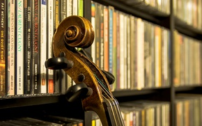 Wallpaper Grif, screw, musical instrument, strings, library