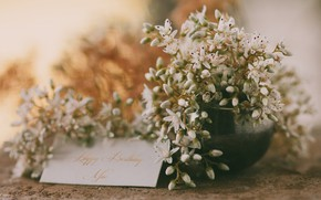 Picture flowers, congratulations, postcard, happy birthday me, Happy birthday