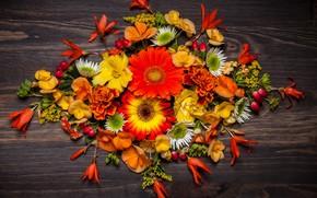 Wallpaper autumn, wood, leaves, composition, autumn, leaves, floral, flowers, flowers