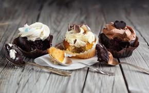 Picture chocolate, cream, cupcake, cupcakes, vanilla, vanilla