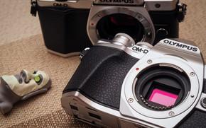 Picture macro, pair, cameras, Olympus OM-D