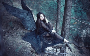 Picture angel, Forest, black wings