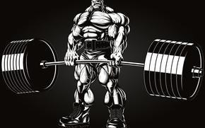 Picture power, men, bodybuilding