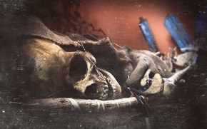 Picture skeleton, Tomb of The Eagles, skull, Scotland, Orkney Islands, Scotlandia, texture, Orkney, The tomb of …
