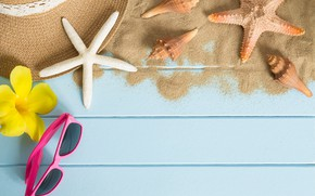 Picture sand, beach, summer, stay, star, hat, glasses, shell, summer, beach, sand, starfish, sunglasses, seashells