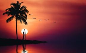 Wallpaper sea, summer, the sky, girl, birds, Palma, silhouette
