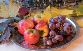 Picture leaves, berries, Apple, grapes, fruit