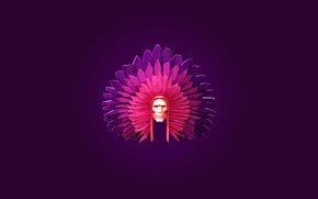 Picture feathers, warrior, Indian, headdress, the leader, low poly