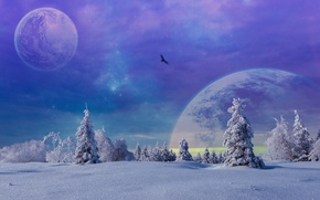 Picture Winter, Trees, Snow, Planet, Fiction