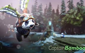Picture Panda, Dota 2, Captain Bamboo