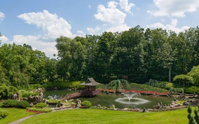 Picture greens, summer, the sky, grass, the sun, clouds, trees, pond, Park, stones, lawn, fountain, USA, …