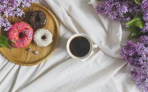 Picture flowers, coffee, Breakfast, donuts, food, cup, drink, coffee, breakfast