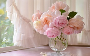 Picture pink, roses, bouquet, window