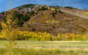 Wallpaper USA, autumn, fence, field, areas, panorama, fences, trees, Colorado, Aspen, mountain, Sunny