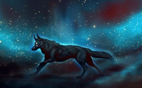 Picture space, fiction, wolf, by JadeMere