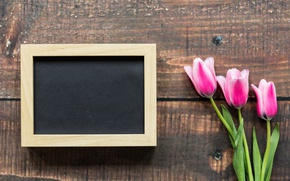 Wallpaper love, wood, frame, pink tulips, pink, romantic, tulips, March 8, tulips, flowers