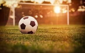 Picture field, grass, the sun, lawn, football, the ball, gate, bokeh