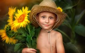 Picture summer, sunflowers, hat, boy