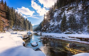 Picture clouds, snow, river, trees, the sun