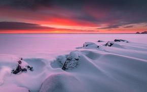 Picture winter, snow, frozen, Finland, Finland, Finland, Joensuu