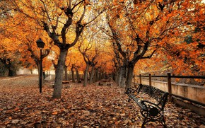 Wallpaper autumn, the city, street, bench