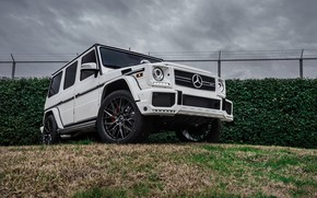 Picture Mercedes, Benz, G63, The dealership, Boden