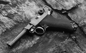 Picture macro, Gun, 1920, Luger, The German Empire