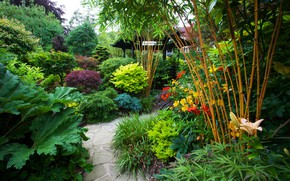 Picture greens, trees, flowers, England, garden, track, gazebo, the bushes, Walsall Garden