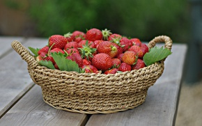Picture strawberry, berry, ripe, delicious, juicy
