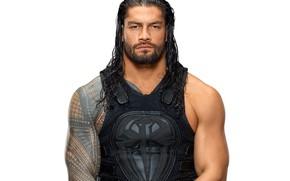 Picture look, muscle, muscle, tattoo, athlete, tattoo, wrestler, Roman Reigns, Roman Raines, tattoo, WWE