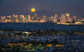 Picture landscape, mountains, night, lights, palm trees, the moon, building, home, yachts, CA, Bay, USA, promenade, …