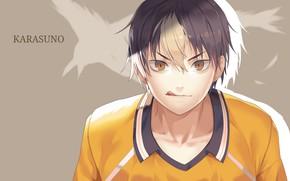 Picture language, look, guy, grey background, yellow eyes, bangs, sports uniforms, haikyuu!!, volleyball!!, nishinoya yuu