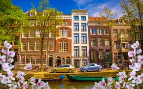 Picture river, spring, boats, Amsterdam, flowering, blossom, Amsterdam, flowers, old, spring, buildings, Netherlands, canal