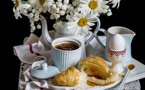 Picture egg, chamomile, Breakfast, jam, croissant