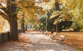 Picture autumn, the city, Park, Prague