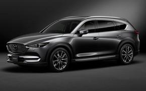 Picture Mazda, 2018, Custom, CX-8