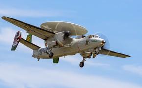 Picture Hawkeye, Northrop Grumman, E-2C, carrier-based aircraft