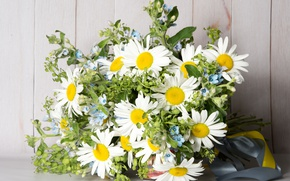 Picture greens, summer, chamomile, bouquet