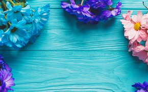 Picture flowers, spring, colorful, Board, chrysanthemum, wood, blue, flowers, spring, decoration