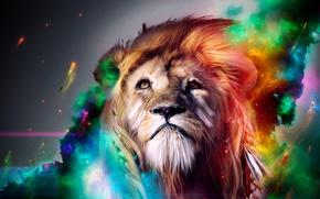 Picture animal, paint, Leo