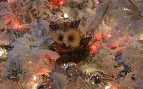 Picture holiday, owl, toy, tree, new year