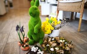 Picture hare, eggs, Easter, wreath, daffodils, decor