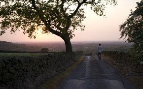 Picture road, fog, the evening, male