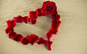 Picture sand, flower, red, creative, background, mood, rose, petals, heart, Valentine's day