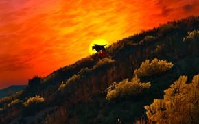 Picture landscape, rider, The Witcher 3, Wild Hunt
