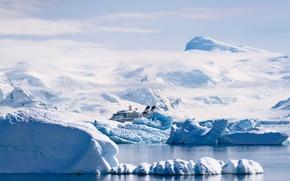 Picture mountains, transatlantic, cruise ship
