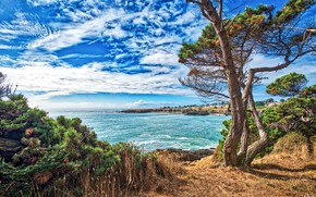Picture sea, the sky, the sun, clouds, trees, rocks, coast, home, treatment, horizon, CA, USA